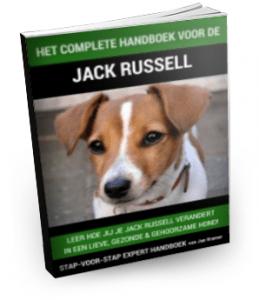 handboek jack russel